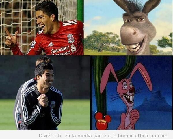 Parecido razonable Luis Suarez con burro Shreck