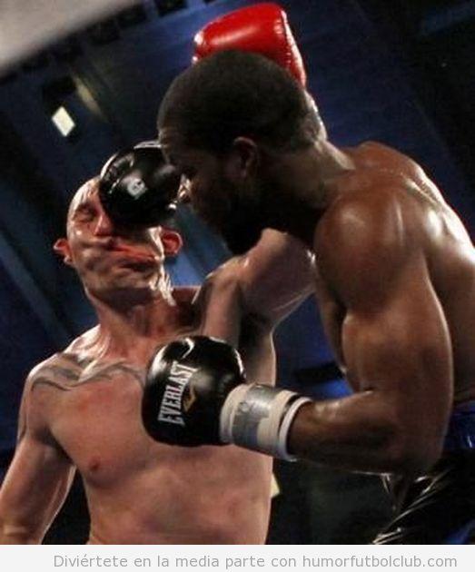 Harvell  da un Puñetazo en un combate de Boxeo acaba en Knockout