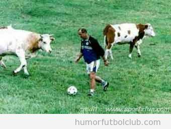 Jugador de fútbol en un pasto con las vacas