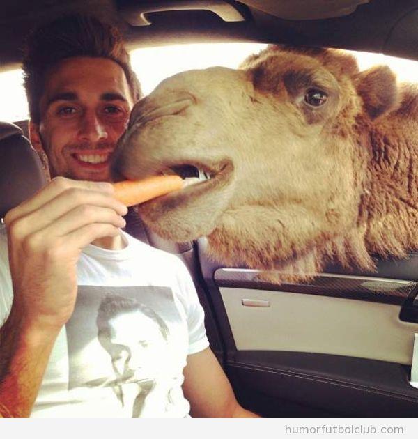 Foto graciosa de Arbeola dando de comer a un camello en el safari park de Madrid