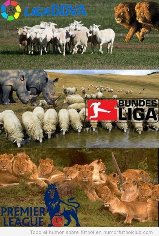 Meme gracioso fútbol, diferencia entre Liga BBVA, Bundesliga y Premier